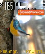 Yellow Bird theme screenshot