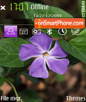 Flower 07 theme screenshot