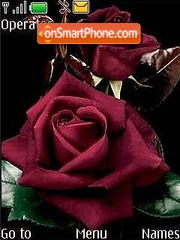 Rose2 theme screenshot