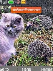 Cat and Hedgehog theme screenshot