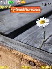 Daisy tema screenshot