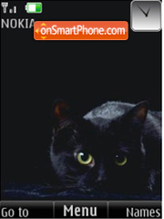 Black cats 12 pictures theme screenshot