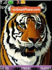 Tigra theme screenshot