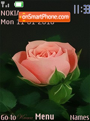 Rose flash 1.0 es el tema de pantalla