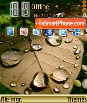 Leaf Drops theme screenshot