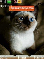 Cat 14 theme screenshot