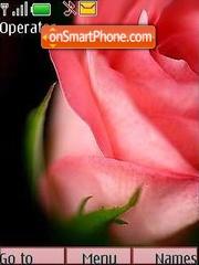 Flowers3 theme screenshot