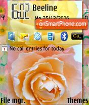 Friendship Roses theme screenshot