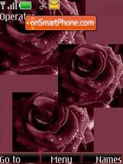 Rose es el tema de pantalla