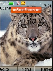 Snow Leopard theme screenshot