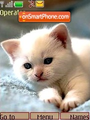 Kittens2 es el tema de pantalla