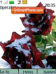 Roses in snow theme screenshot