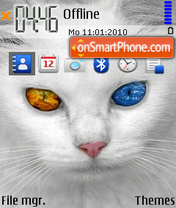 White Cat 02 theme screenshot