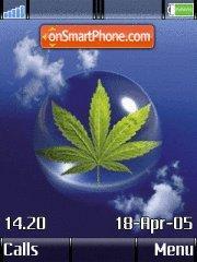 Cannabis es el tema de pantalla
