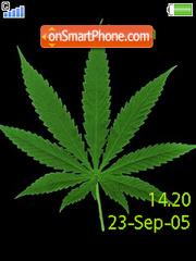 Swf Ganja Weed W580 es el tema de pantalla