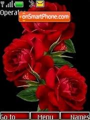 Roses01 theme screenshot