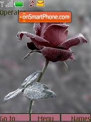 Скриншот темы Rose frost