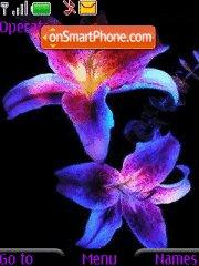 Color Flowers tema screenshot