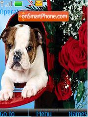 Скриншот темы Bull Dog Valentines Day
