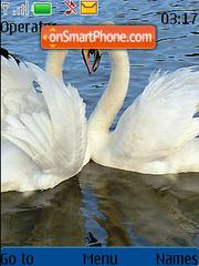 Love in Ducks tema screenshot