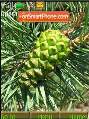 Скриншот темы Pine Cones