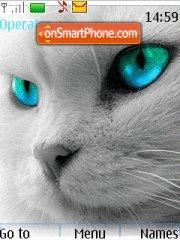 Kittens Face theme screenshot