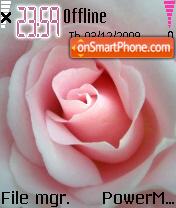 Pink Rose 03 es el tema de pantalla