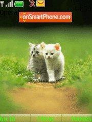 2 Kittens theme screenshot