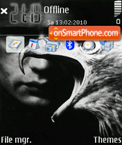 Eagle 06 theme screenshot