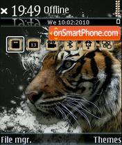 Tiger 22 theme screenshot