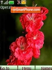 Flowering07 es el tema de pantalla