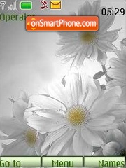 Camomile02 theme screenshot