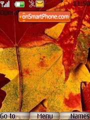 Nature 1 (Autumn) theme screenshot