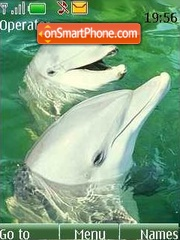 Dolphin theme screenshot