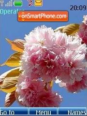 Spring colour theme screenshot