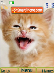 Red kittens, 12 pictures theme screenshot