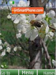 Скриншот темы Spring flowers, slide