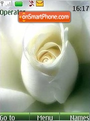 Tenderness of roses theme screenshot