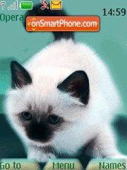 My little cats theme screenshot