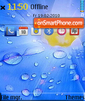 Rain Flower es el tema de pantalla