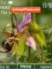 Скриншот темы The first flowers