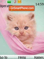 Sweet Kitten 01 theme screenshot