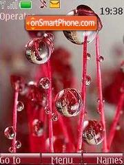 Dew theme screenshot