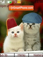 Funny Cat Couple theme screenshot