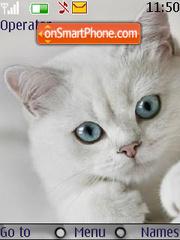 Nice Cute Cat theme screenshot