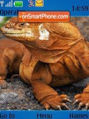 Iguana theme screenshot