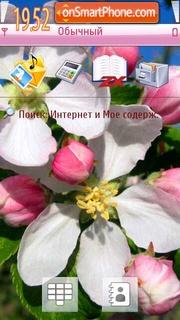 Apple Flowers theme screenshot