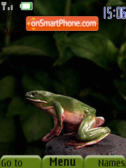 Jumping Frog theme screenshot