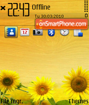 Sunflower Ovi es el tema de pantalla
