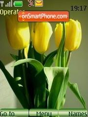 Yellow tulips theme screenshot